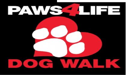 dog-walk-pic_f7e1eab1-5056-a36a-0b3694bd93419bbe