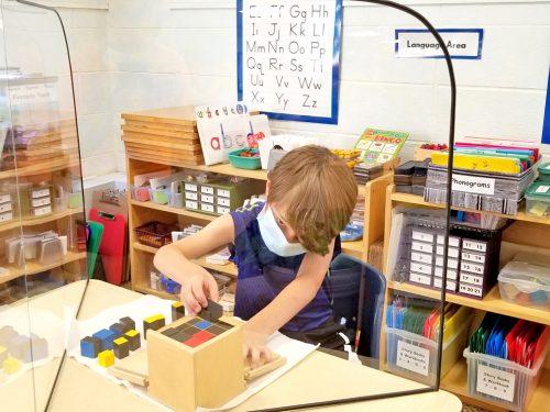 The Montessori School - Morrisville