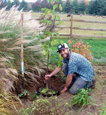 Paxson Hill Farm - New Hope