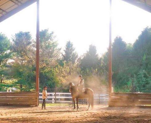 Rising Star Equestrian Center - New Hope